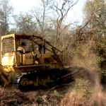 deforestacionnorte