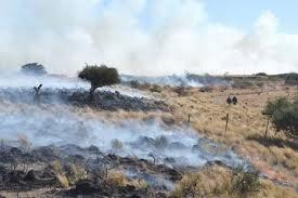 _incendio_en_campo_el_alambrado