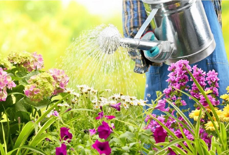 Cinco trucos para renovar el jardín en primavera